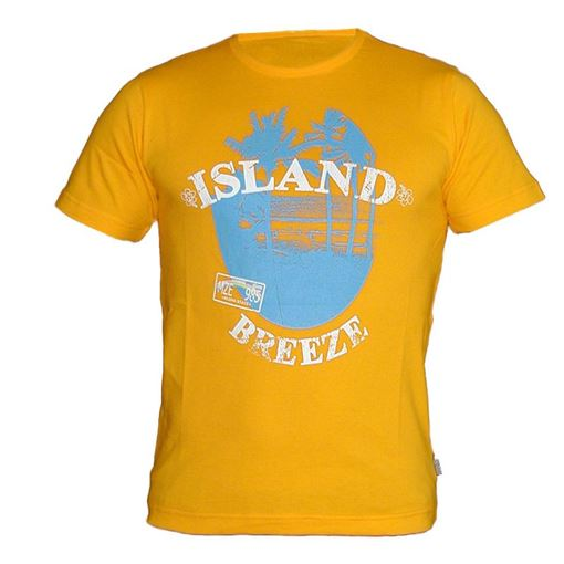 T-SS T-Shirt Chiemsee Island